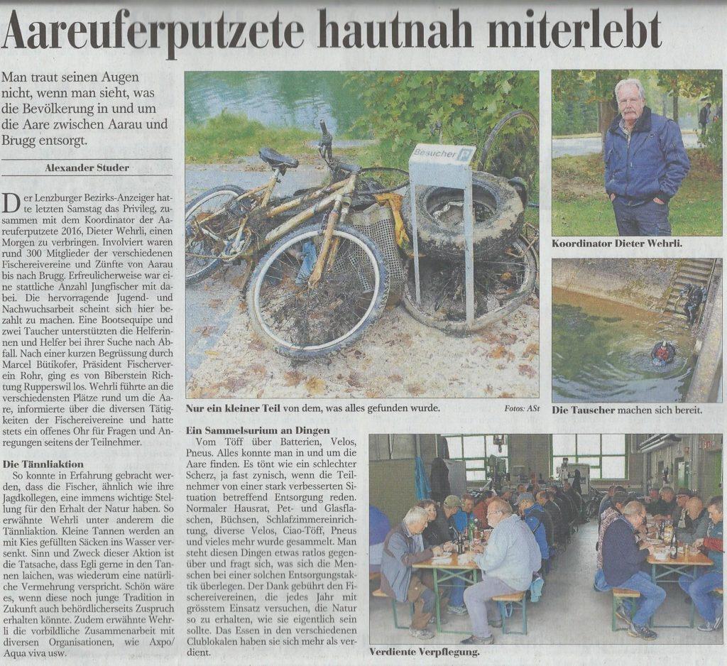 bericht-aareputzete-bezirkszeiger-2016